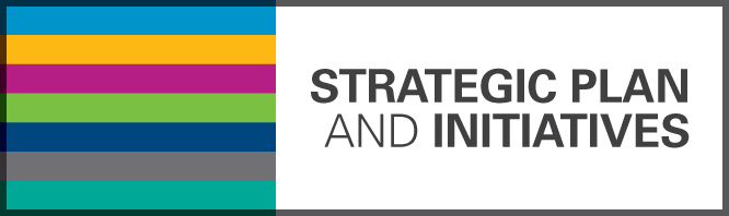 Strategic Plan and Initiatives