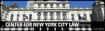 Academic Centers and Programs: Center for New York City Law by Andrew Casarsa